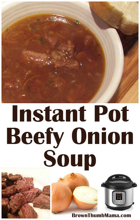 Instant Pot Beefy Onion Soup Brown Thumb Mama