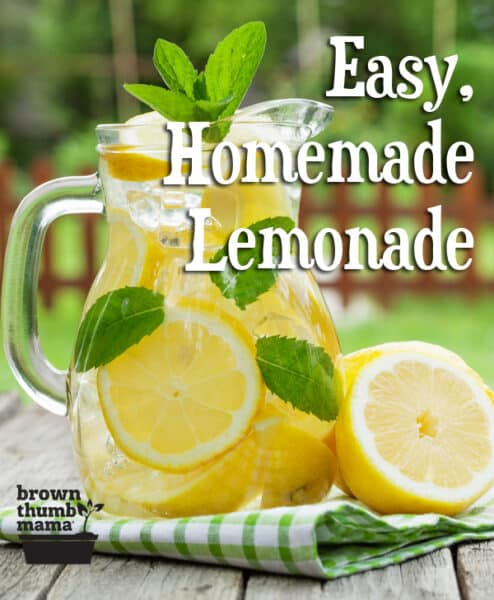 This delicious, homemade lemonade recipe is a burst of tart and sweet flavors--without corn syrup, artificial flavors, or dyes. A family favorite! #lemonade #kids #organic #homemade