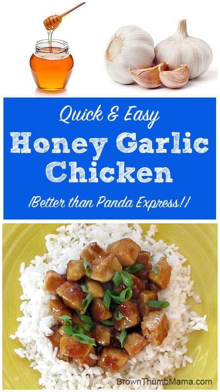 Honey-Garlic Chicken {Better Than Panda Express}