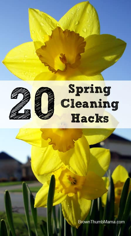 Cleaning is no fun--so why not use some clever life hacks to make it easier? These fast and easy tips will solve all of your cleaning problems in a flash. Includes recipes for natural cleaners, too!