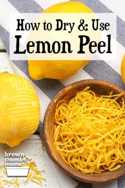 lemons and bowl of lemon zest