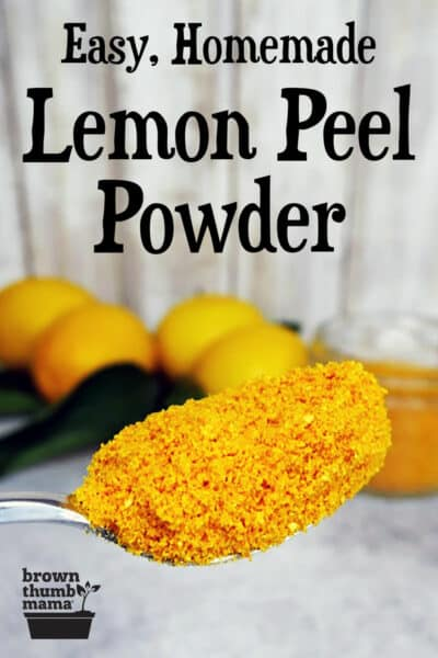 scoop of lemon peel powder in front of lemons