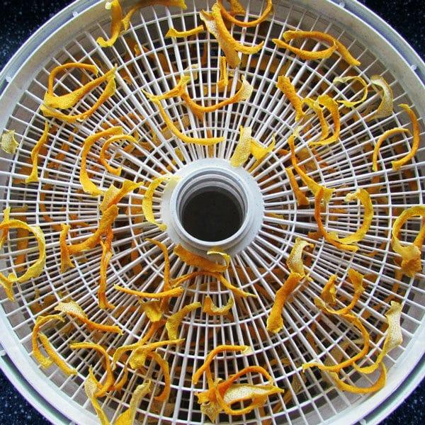 dried lemon peels on dehydrator tray