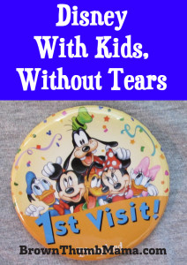 Disney With Kids, Without Tears: BrownThumbMama.com