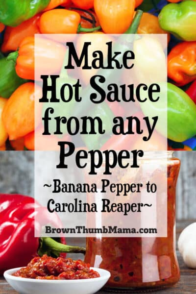 make hot sauce from any kind of pepper