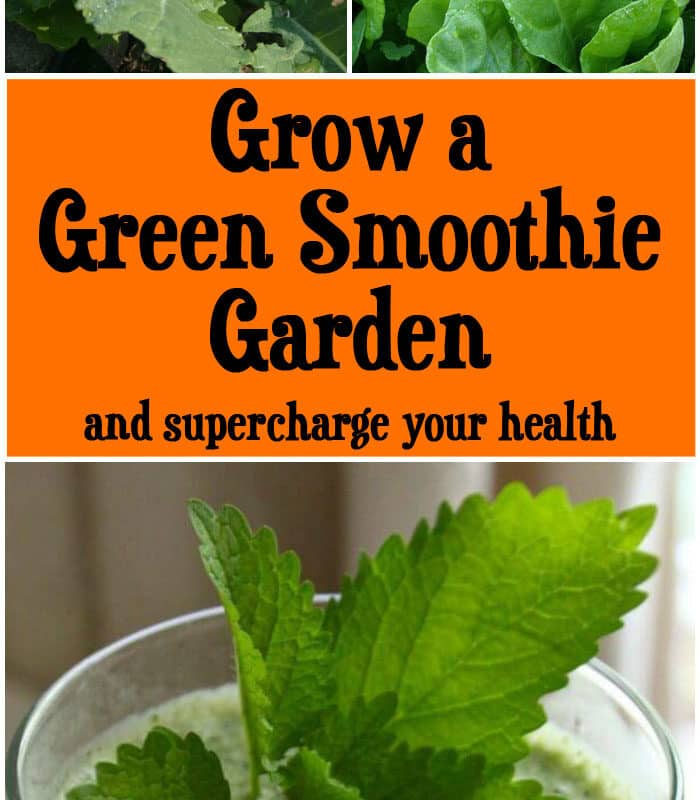 Grow a Green Smoothie Garden