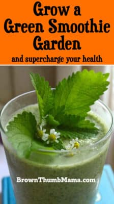 Grow a Green Smoothie Garden: BrownThumbMama.com