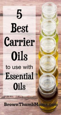 Best Carrier Oils to Use With Essential Oils: BrownThumbMama.com