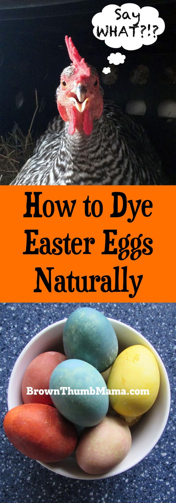 How to dye easter eggs naturally brown thumb mama How to color easter eggs