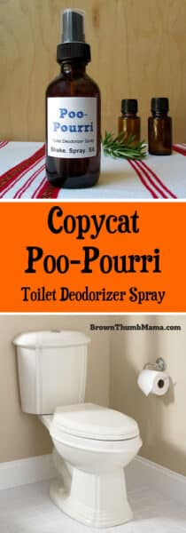 Copycat Poo Pourri Spray Brown Thumb Mama 174