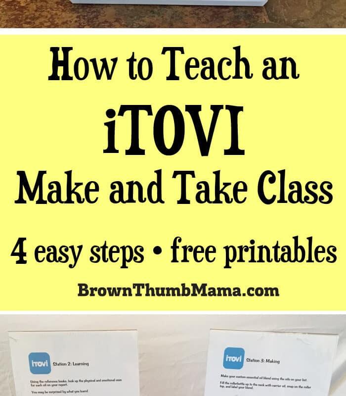 How to Teach an iTOVI Make and Take Class