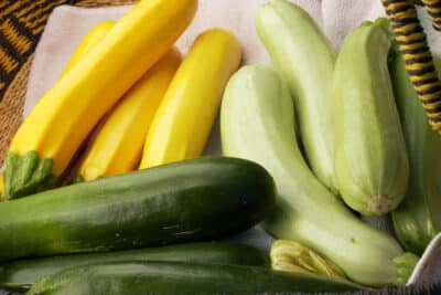 Plant these 10 vegetables in July for a huge harvest this Fall. Includes recommended varieties and growing tips. (Zone 9)