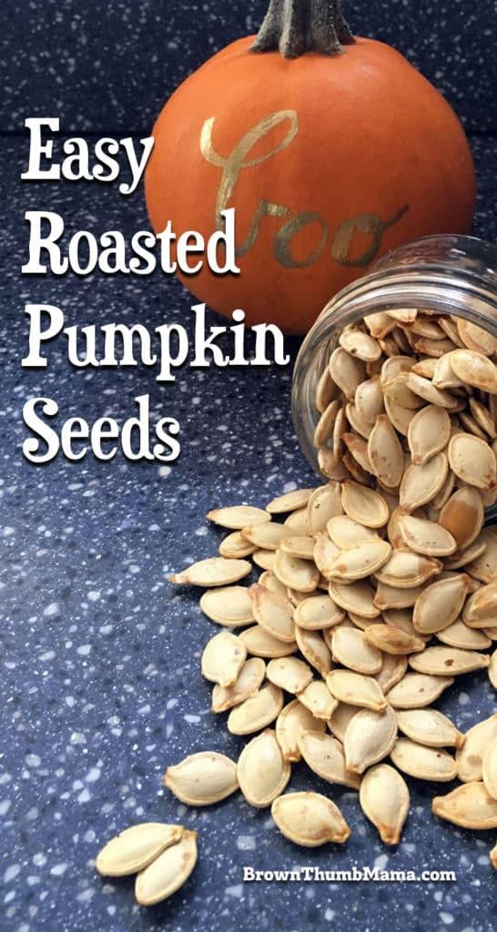 roasted pumpkin seeds spilling out of jar