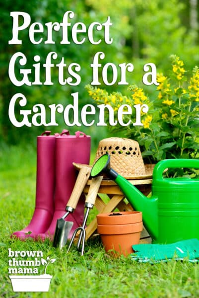 Gardening tools outside