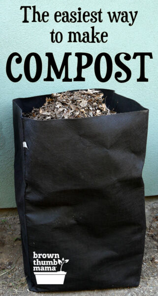 compost bin full of leaves