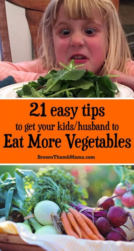 If your kids and husband avoid vegetables, don't worry! Here are 21 easy tricks to help everyone in your family eat more vegetables. #kids #toddler #vegetable #healthy
