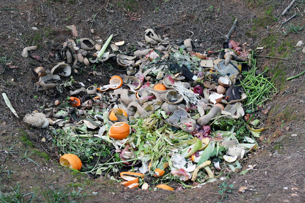 vegetable scraps in pit compost