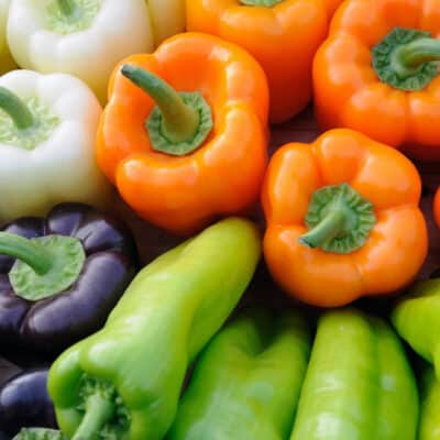 colorful sweet and hot peppers
