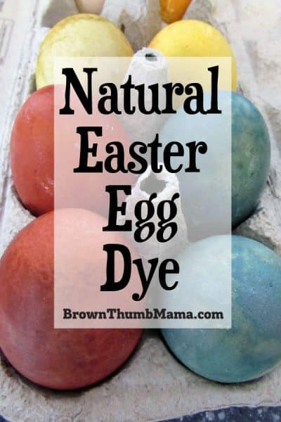 How To Dye Easter Eggs Naturally Brown Thumb Mama 174