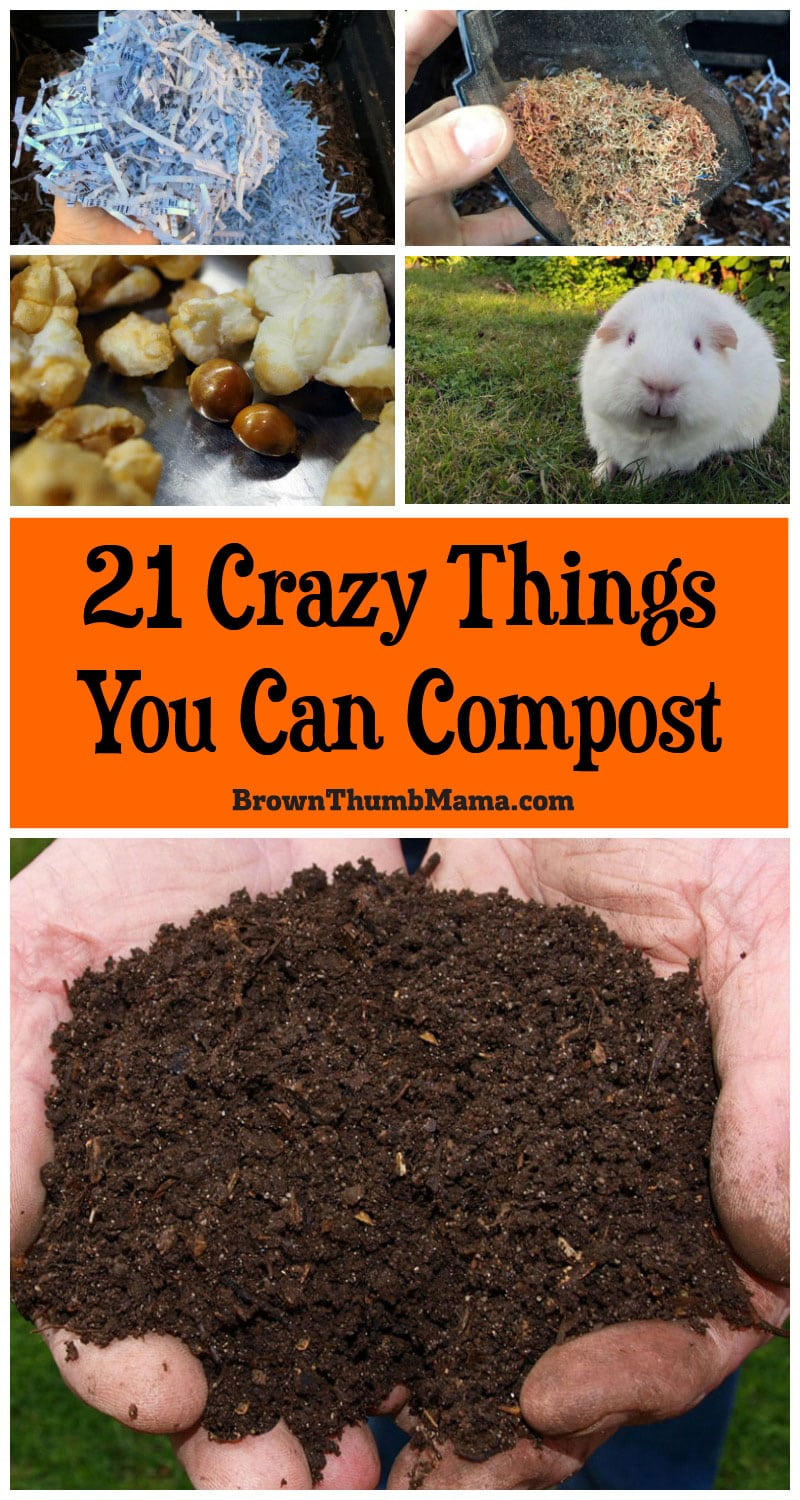 Compost is easy to make, improves your #garden, and prevents kitchen waste. Here are 21 crazy things you can put in your #compost. Would you try number 19?