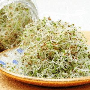 plate of alfalfa sprouts