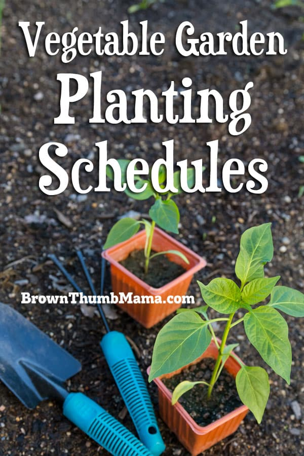 You don't have to wonder if it's the right time to plant your vegetables! These customized schedules are easy to read and tell you exactly what to plant each month. #gardening #organicgardening