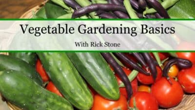 Learn more about gardening from a Certified Master Gardener! Vegetable Gardening Basics is a comprehensive video course that I highly recommend.