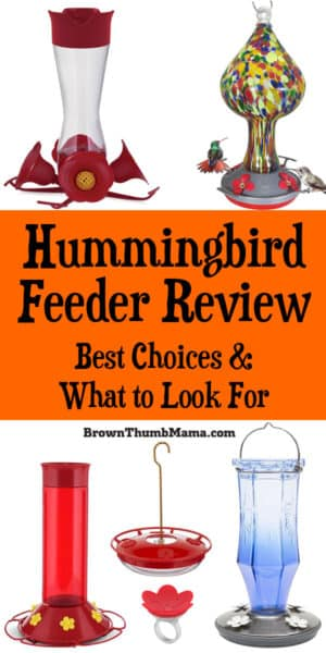 Love hummingbirds? Me too! Here's a review of the most popular hummingbird feeders, and what to look for when buying a hummingbird feeder. #hummingbird #garden #birdfeeder