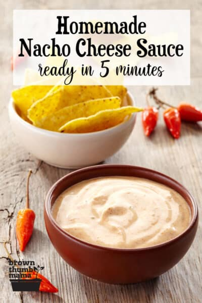 bowl of nacho cheese sauce and chips