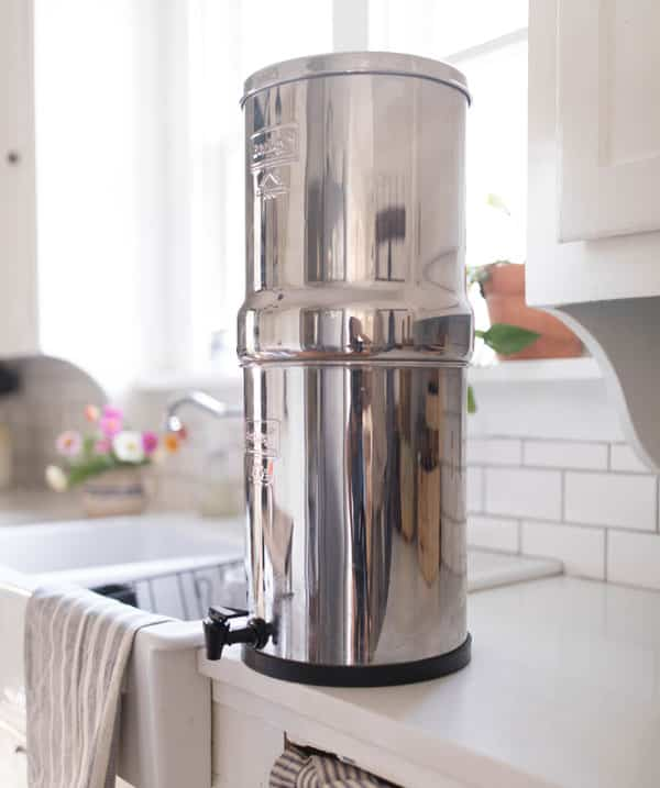 How do you choose the best water filter system for your family's needs? There's a big difference between a water filter and a water purifier, and believe me--you want a water purifier.