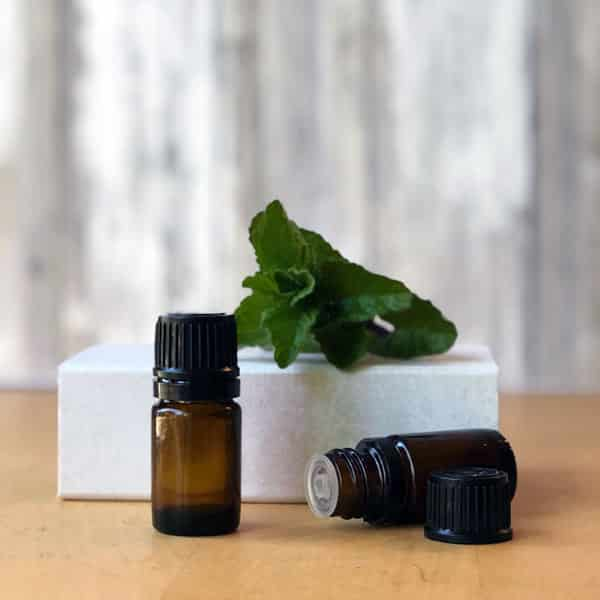 essential oil bottles and mint leaves