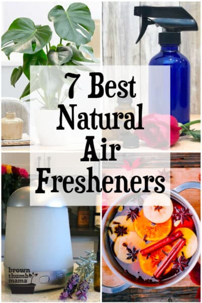 7 best natural air fresheners