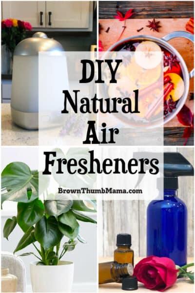 DIY natural air fresheners