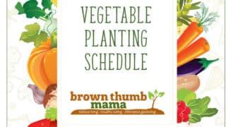 Vegetable Garden Planting Schedules
