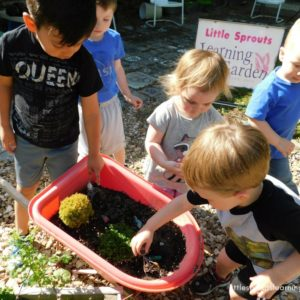 toddlers planting seeds in a small wheelbarrow