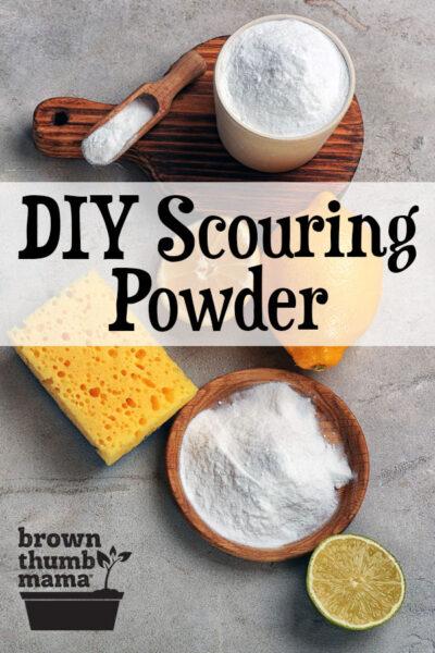 bowl of homemade scouring powder, sponge, and lemon