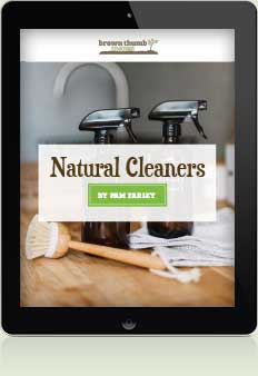 Easy Natural Cleaners