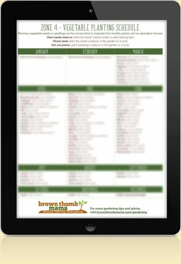 Zone 4 Vegetable Schedule