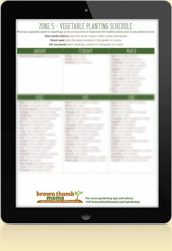 Zone 5 Vegetable Schedule
