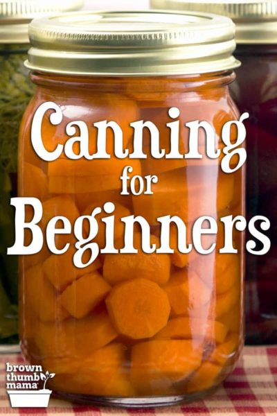 home canned carrots in jar