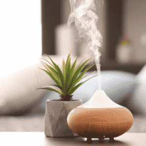 diffuser and plant on table