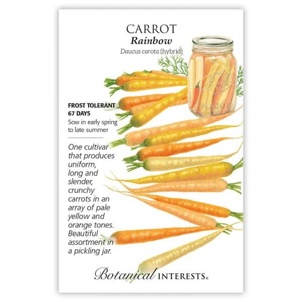 Karottensamenpaket