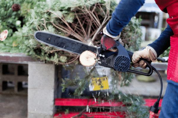 cutting christmas tree trunk