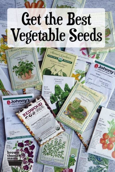 assorted vegetable seed packets