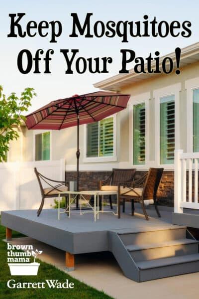 backyard patio table with umbrella