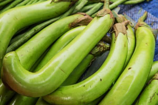 green eggplant on table