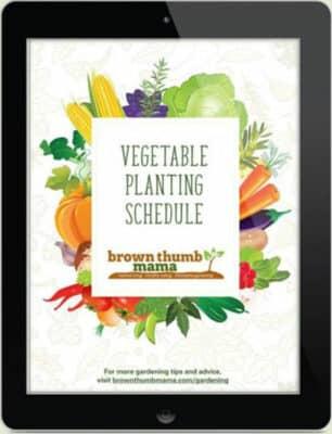 E-Book zu Pflanzplänen für Gemüse