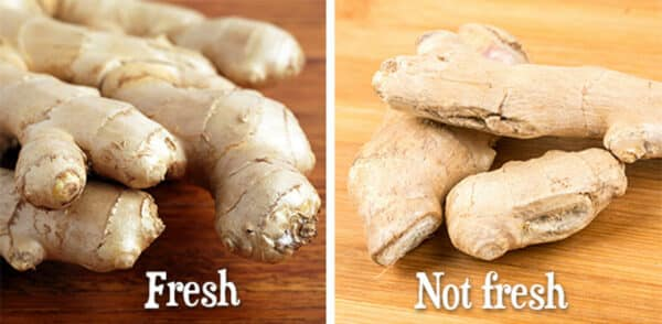 comparison of fresh and stale ginger root