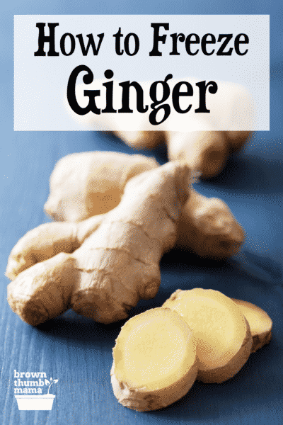 sliced and whole ginger on blue table