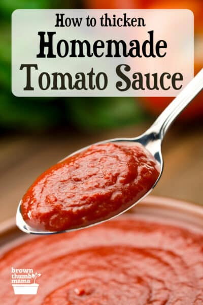 spoonful of thick homemade tomato sauce